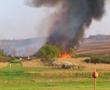 Több hektáron égett a nádas Rád határában