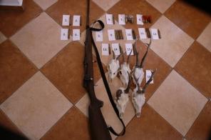 Fegyvereket és lőszereket foglaltak le a váci rendőrök