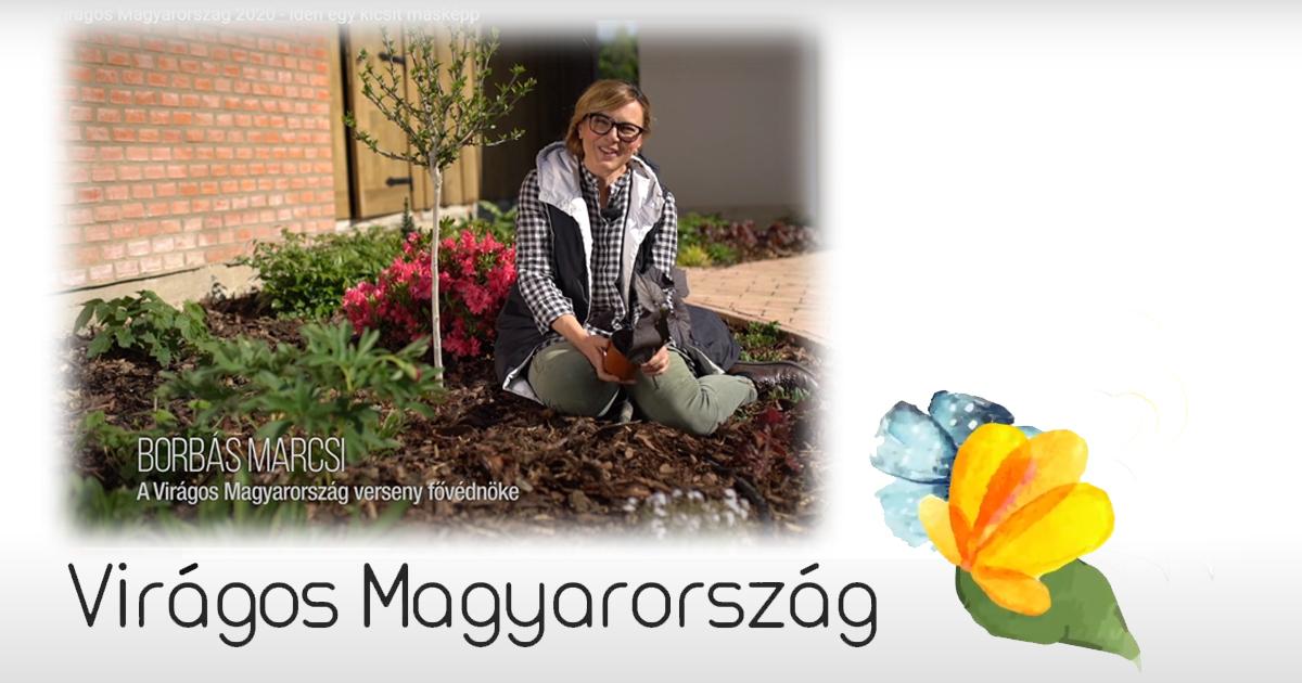Virágos balkonok, virágos kertek – Virágos Magyarország verseny a lakosság részére